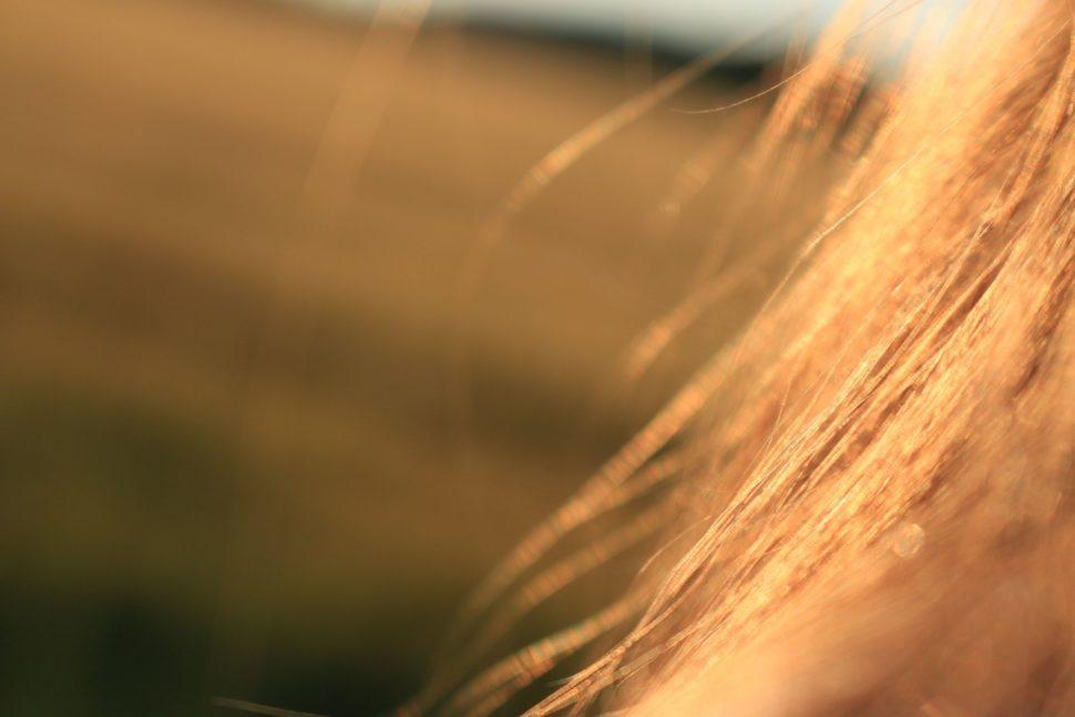kvalita vlasů